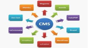 cms-website-designing