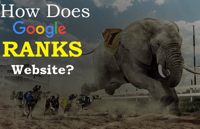 How Does Google Ranks Websites